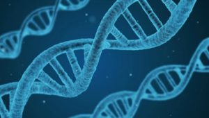 DNA, epigenetics, health, quantum physics